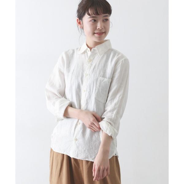 [マルイ] レディスシャツ(Vlas Blomme スタンダードシャツ)/かぐれ(kagure)